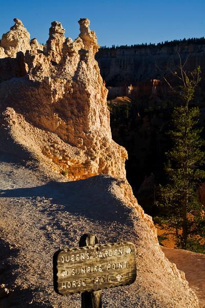 Bryce Canyon 9-5-10 8606