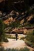 Bryce Canyon 8-30-10_1286