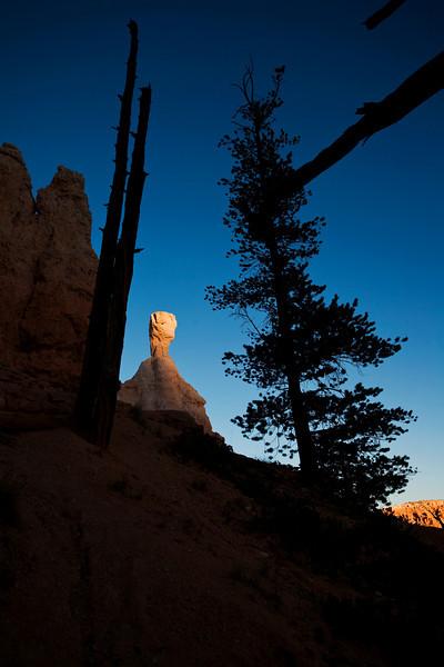 Bryce Canyon 9-5-10 8637