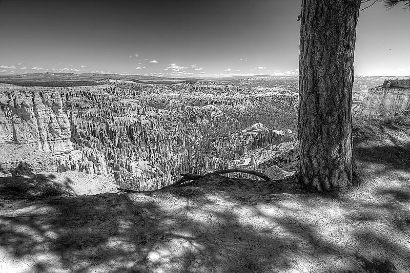 Bryce Canyon B&W