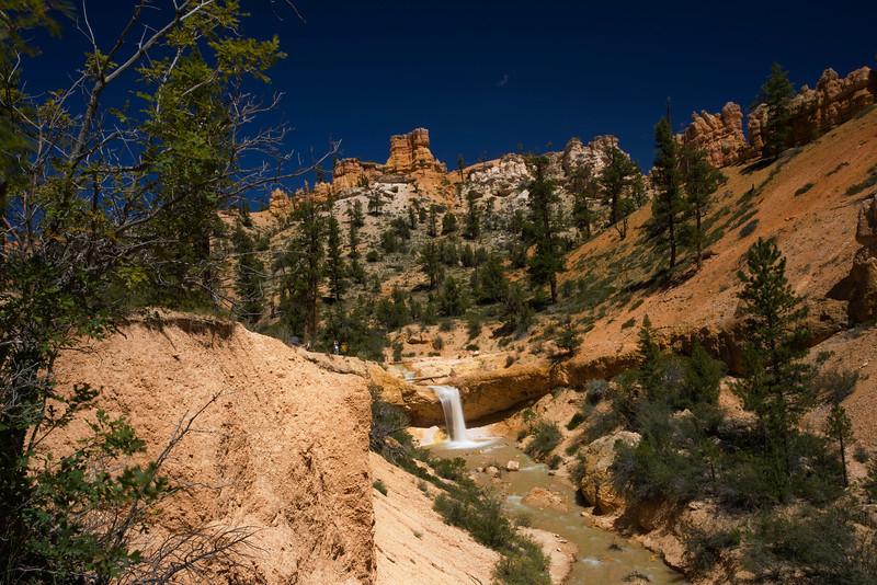 Bryce Canyon 8-30-10_1264