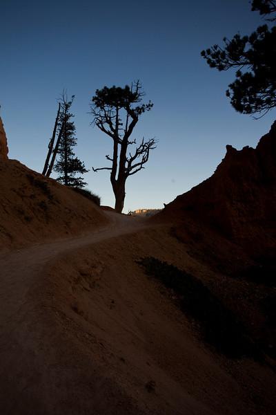 Bryce Canyon 9-5-10 Trail
