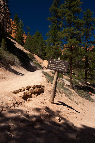 Bryce Canyon Trail