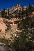 Bryce Canyon 8-30-10_1260