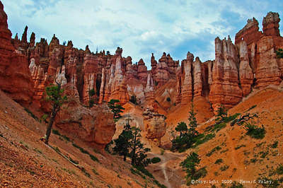 """Queens Garden,"" Byrce Canyon National Park, Utah Jul.'07"