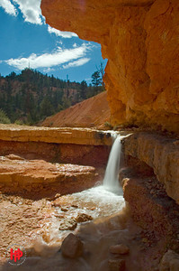 """Summer Dreams"", Seviere Ditch, Bryce Canyon, Ut., Aug.'07"