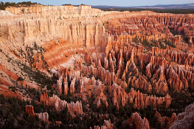 Amphitheater From Bryce Point - Bryce National Park