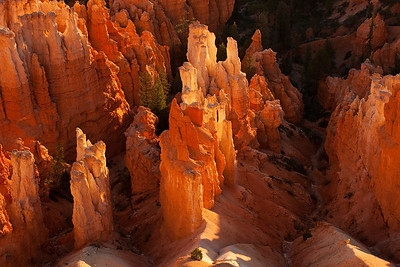 Early light hitting the lower canyon from Inspiration Point - Bryce Canyon