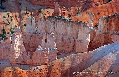 """Orange Creamsicle"", Bryce Canyon, Utah."