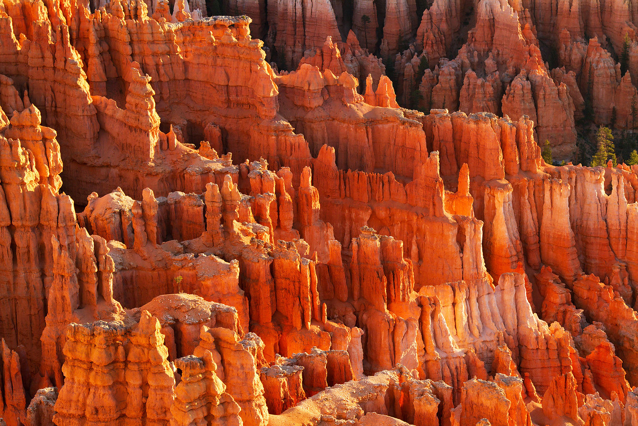 Sunrise on the Hoodoos from Inspiration Point - Bryce Canyon (shot by Yvonne)