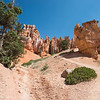If you don't try one of the trail hikes at Bryce canyon, you miss the view from the valley floor.  The shorter Navajo trail is only about 2 1/2 hrs at the most and is well worth the effort.