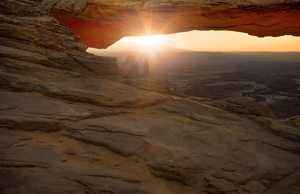 || Mesa Beauty ||