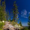 79  G Bear Grass and Trail