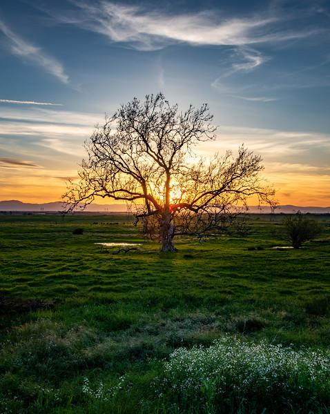 Hwy 70 sunset