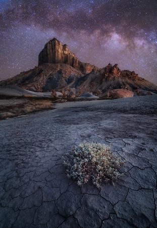 Desert Solitude #2