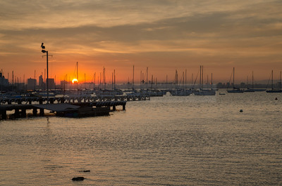 Sunrise over Williamstown marina