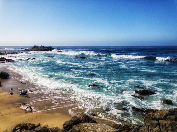 The Amazing Ocean