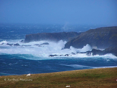 The Wild Atlantic