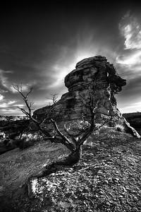 Big Spring Overlook Area Sunset Canyonlands National Park, Utah