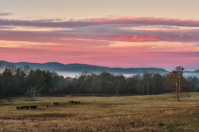 Sunrise over the Horse Pasture