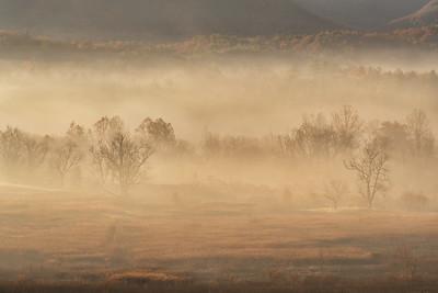 Light and Fog