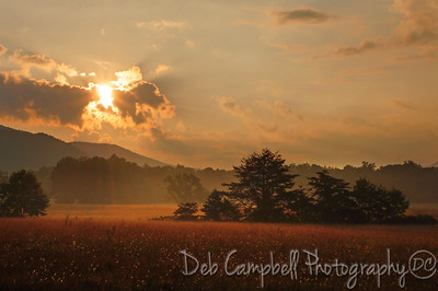 Early morning  Hyatt Lane in Cades Cove Great Smoky Mountains National Park