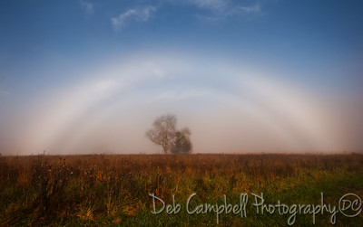 Double Fogbow Cades Cove Great Smoky Mountains