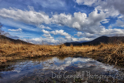 Cades Cove Reflections