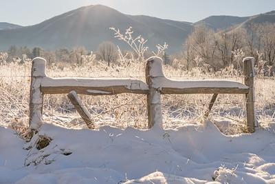 First Snow Day-December 1, 2020
