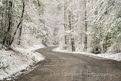 Forge Creek Road