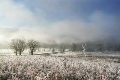 Frost and Fog