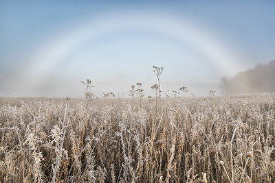 Frosted Fog Bow