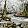 Great Smoky Mountains National Park - TN