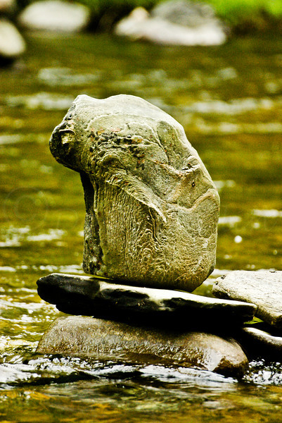 Stone Cairn Frog, Green River, Leyden, MA