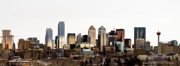 Calgary Downtown Skyline