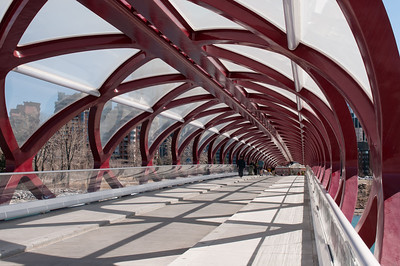 "Calatrava ""Peace Bridge"""