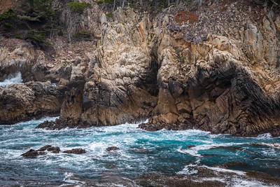 Point Lobos 9689