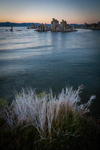 Mono Lake #2456