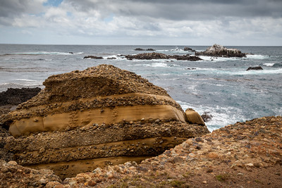 Carmelo Formation, Point Lobos