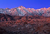 California, Eastern Sierra, Alabama Hills, Mount Whitney, Dawn Twilight, Rocks, Landscape, 加利福尼亚, 惠特尼峰, 黎明, 风景