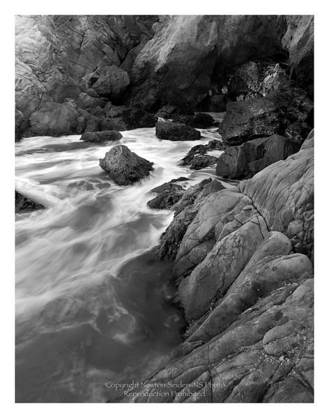 Tide Pool Big Sur, California