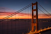 golden gate-9343