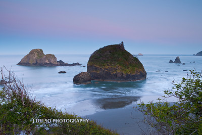 Ca North Coast-5528