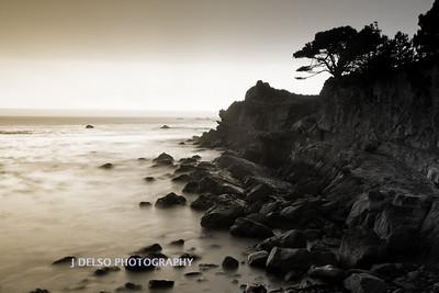 Sonoma Coast-7795