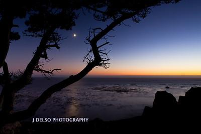 Sonoma Coast-7800