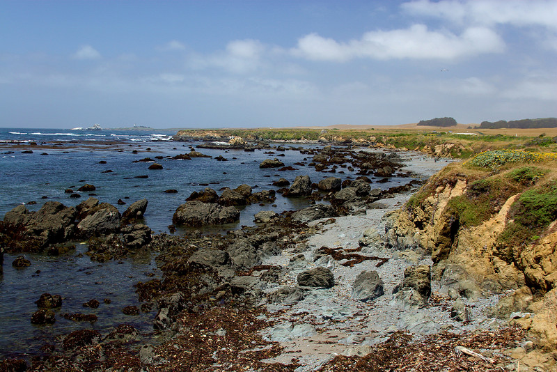"""<i><h2>""""This is on CA Hwy 1 somewhere between San Simeon and Big Sur""""</i></h2>"""
