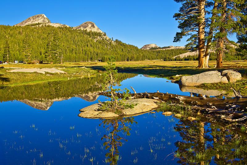 California, Eastern Sierra, Tuolumne Meadows, 加利福尼亚; 优胜美地国家公园