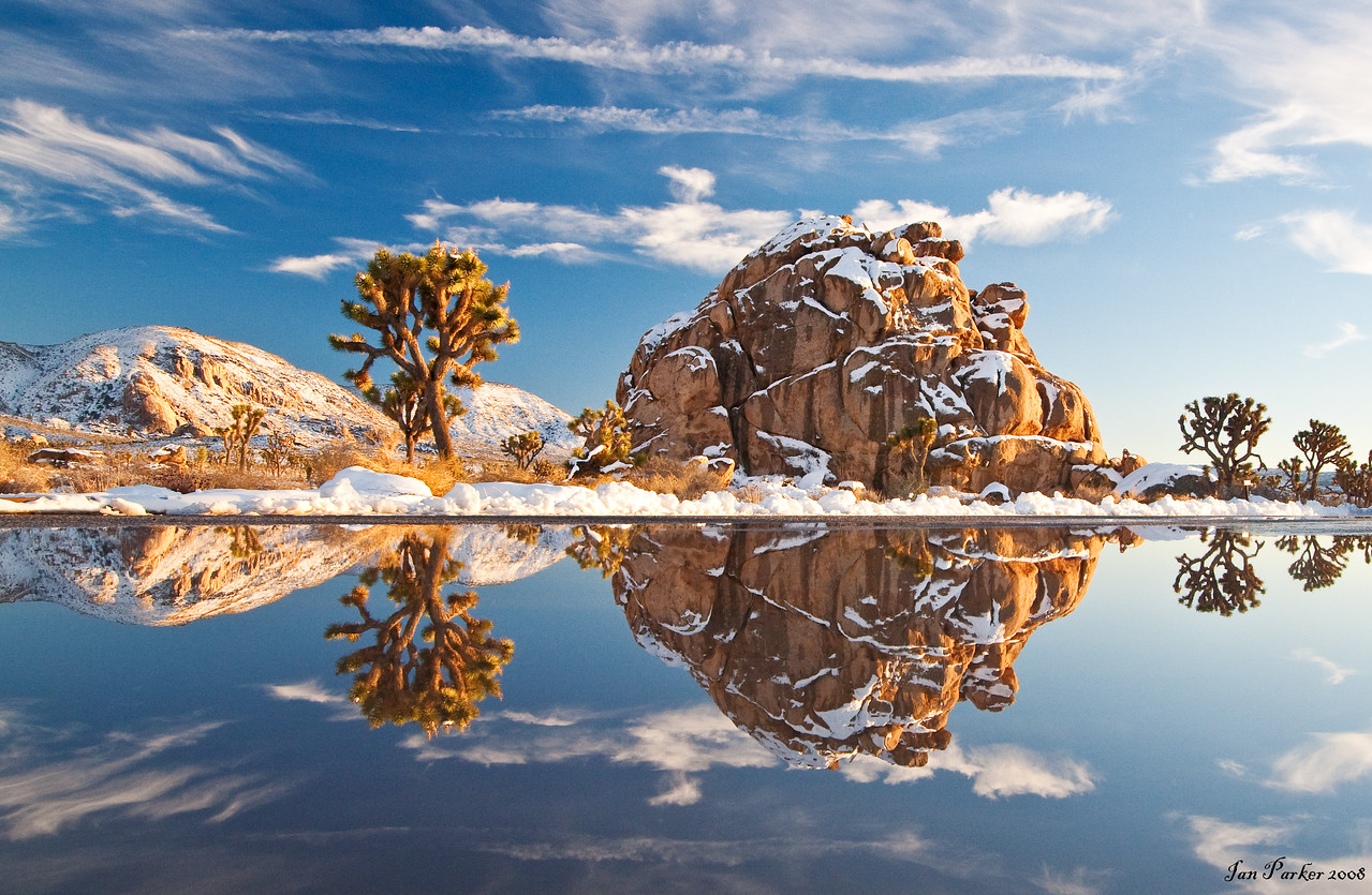 Winter reflections; Joshua Tree National Park