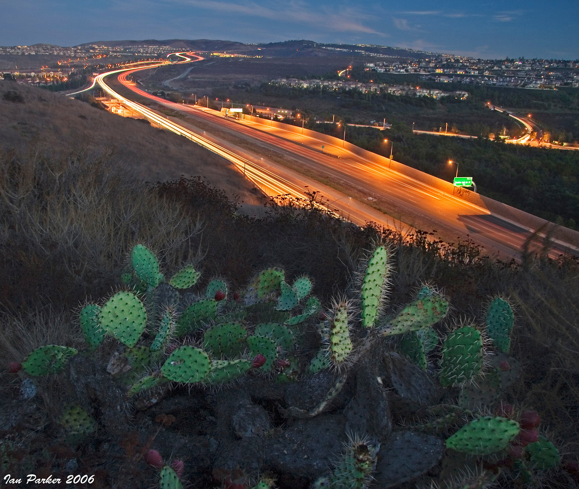 Toll road from UCI Ecological Preserve