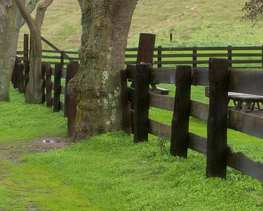 Public stables in Contra Costa, near Pittsburg, CA